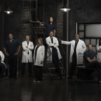 Grey's Anatomy Cast: Before the Were Stars