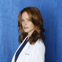 Sarah Drew as Dr. April Kepner