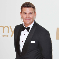 David Boreanaz vs. Cat Deeley: Which Fox Star Do You Love More?