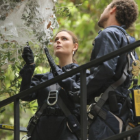 Brennan and Hodgins in the Field