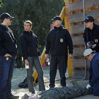 At the crime scene ncis