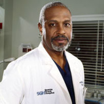 Richard webber the chief