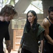Oliver, Shado and Slade