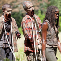 Michonne and Friends