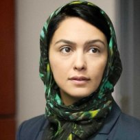Nazanin-boniadi-on-homeland