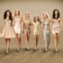 Private lives of nashville wives cast pic