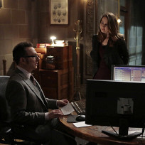 Root and Finch