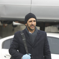 Amir Arison as Aram Mojtaba