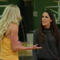 Brie bella vs summer rae
