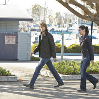 Kensi and Deeks: Partners Again