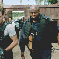 Mcgarrett and grover on the case