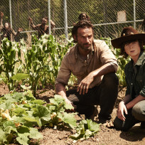 Andrew-lincoln-and-chandler-riggs-in-the-walking-dead