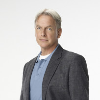 NCIS Cast: Before They Were Stars