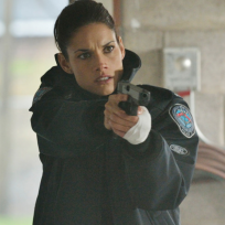 Andys got a gun rookie blue s5e10