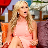 Tamra vs vicki the real housewives of orange county