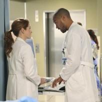 Japril on Season 11 - Grey's Anatomy