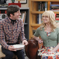 The cold shoulder the big bang theory