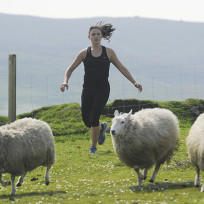 Corraling the sheep the amazing race