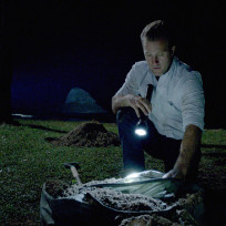 Searching for millions hawaii five 0