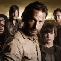 The walking dead survivors