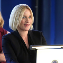 Special agent avery ryan csi cyber