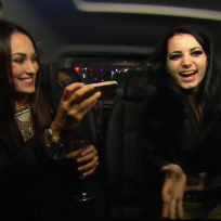 Wild in the uk total divas s3e16