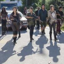 Walking dead survivors the walking dead