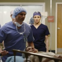 About to begin greys anatomy s11e14