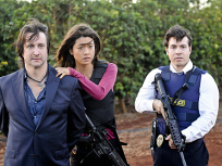 Hawaii Five-0 Season 1 Episode 8