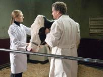 Fringe Season 3 Episode 17
