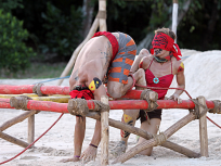 Survivor Season 23 Episode 7