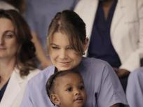 Grey's Anatomy Season 8 Episode 12