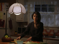 The Americans Season 2 Episode 11