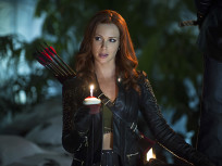 Arrow Season 3 Episode 7 Review