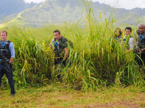 Hawaii Five-0 Season 5 Episode 13