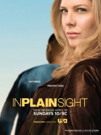 In-plain-sight-poster