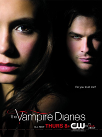 Damon and Elena Poster