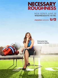 Necessary-roughness-poster