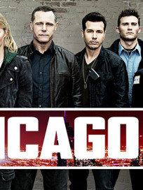 Chicago pd cast pic