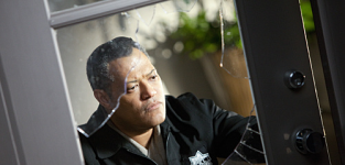 Laurence Fishburne Joins Cast of Hannibal