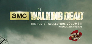 The walking dead poster book cover