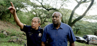 Falling Off a Cliff - Hawaii Five-0