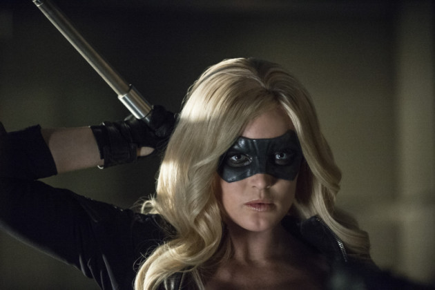 Canary Ready to Fight