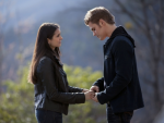 Stelena at a Crossroads