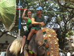 Rachel & Brendan On An Elephant