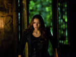 The Vampire Diaries Season 5 Finale Photos