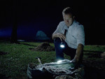 Searching for Millions - Hawaii Five-0