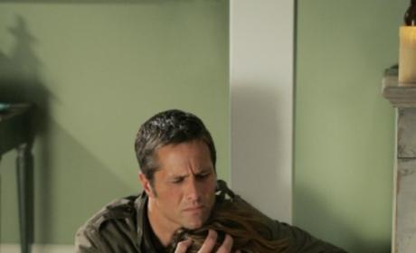 Primetime Preview: 90210, Election Coverage
