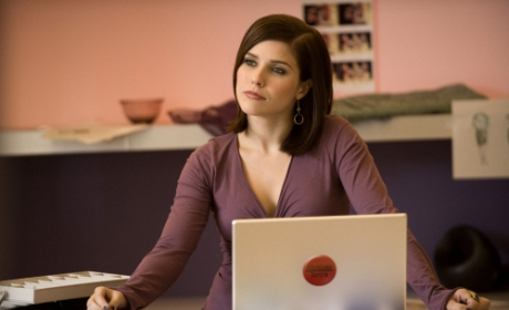 Sophia Bush Cast on CBS Comedy