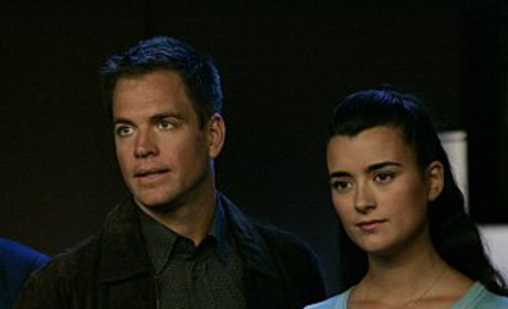NCIS Stars Dodge Tiva Questions, Tease Relationship